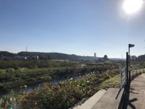 2018-11-25俣野公園