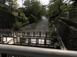 2019-05-05_羽村2
